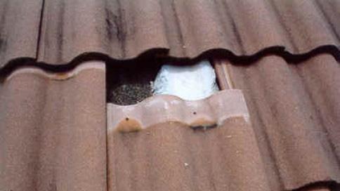 Roof Leak Repair Orlando